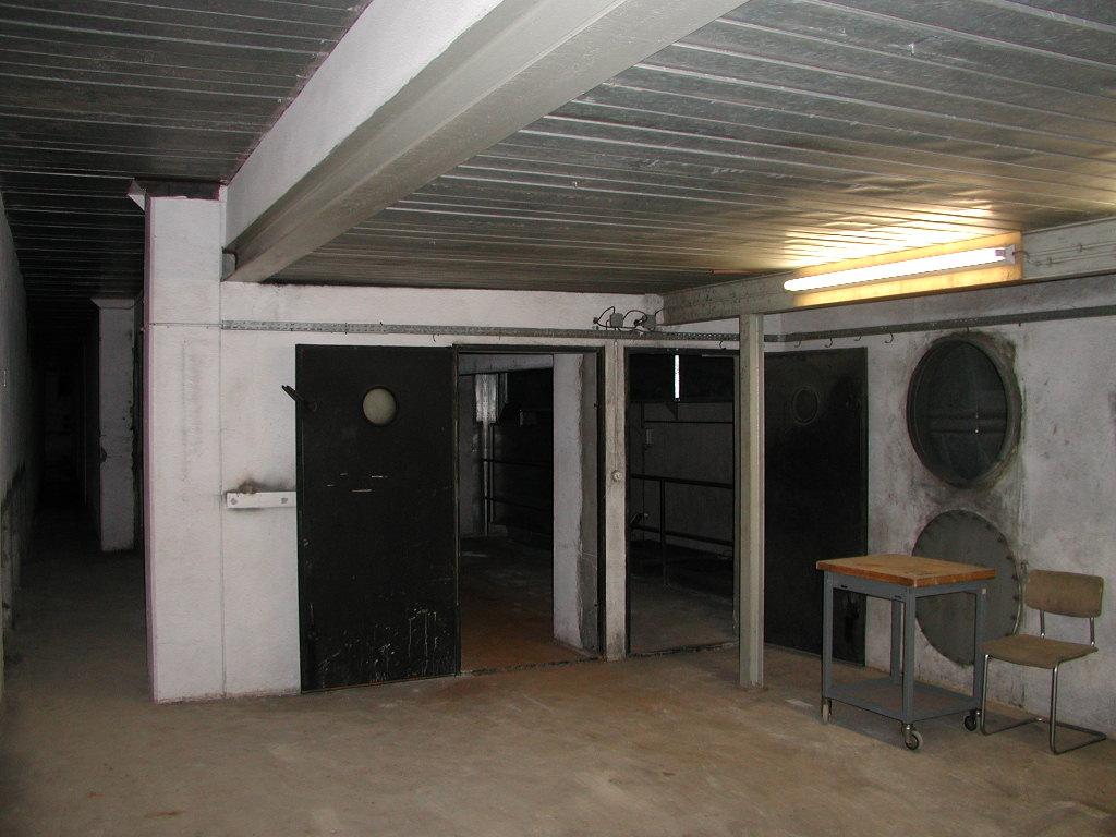 Corrugated Steel Ceiling 17 Corrugated Steel Basement